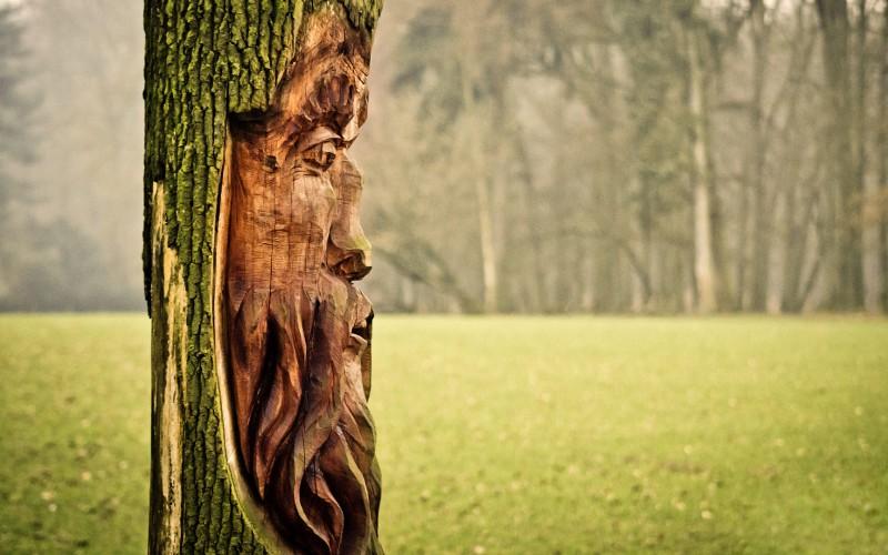 Kunstwerk im Baum