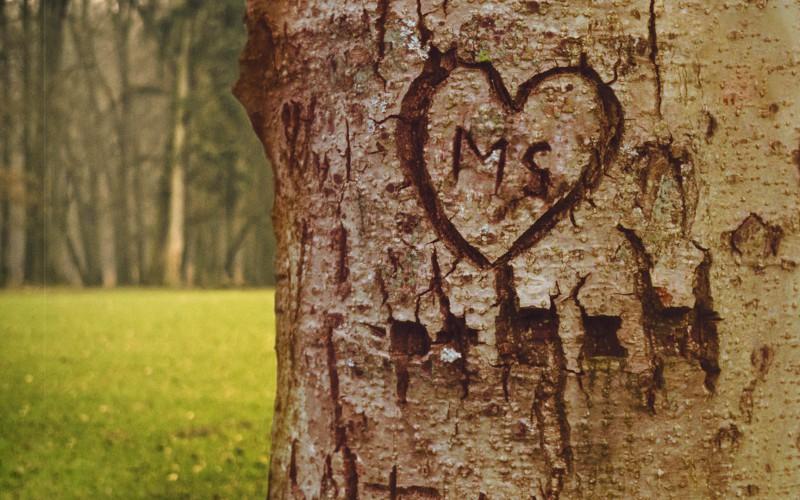Eingeschnitzes Herz
